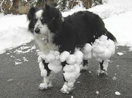 sneeuwpret.jpeg